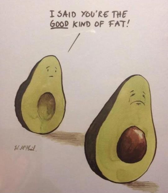 Image Result For Avocado Carb Good Fat