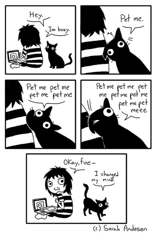 Pet Me, Please