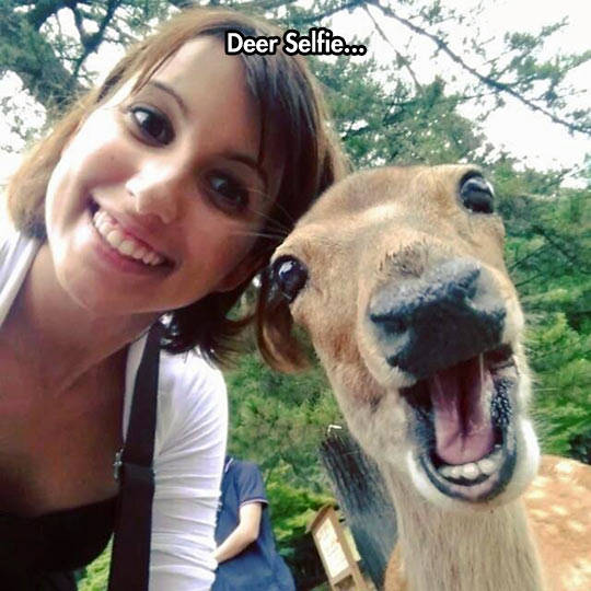 Selfies Are Really Getting Out Of Control