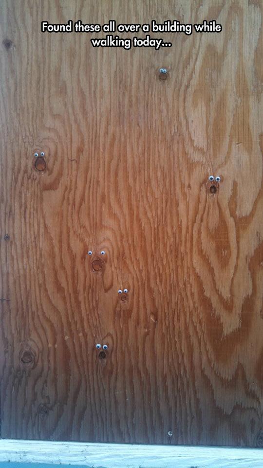 funny-googly-eyes-wood-marks