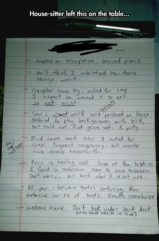 funny-house-sitter-table-paper-notes