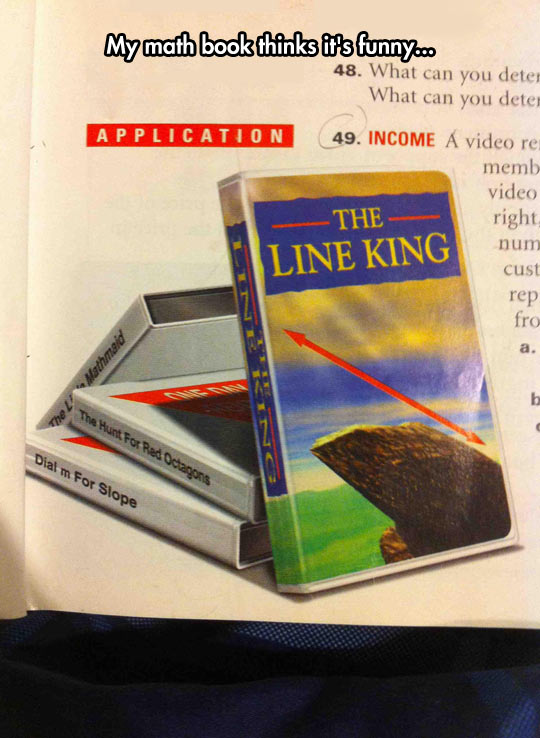 funny-math-book-Lion-King