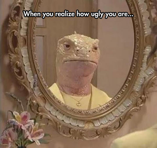 funny-mirror-lizard-face-ugly
