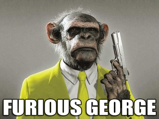 funny-monkey-weapon-furious-George