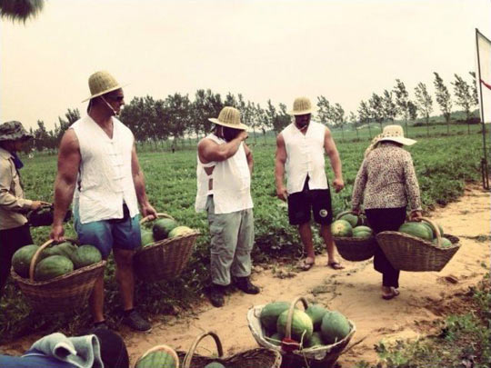 funny-muscle-men-watermelon-plantation-old-lady