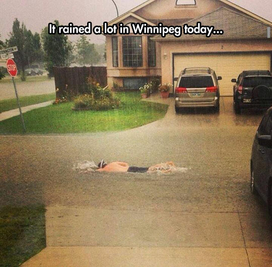 Swimming To The Office