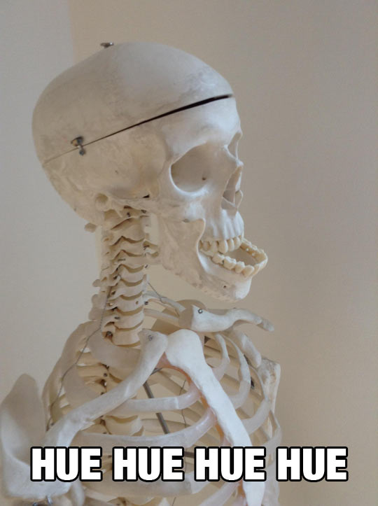 funny-skeleton-jaw-ridiculous-laugh