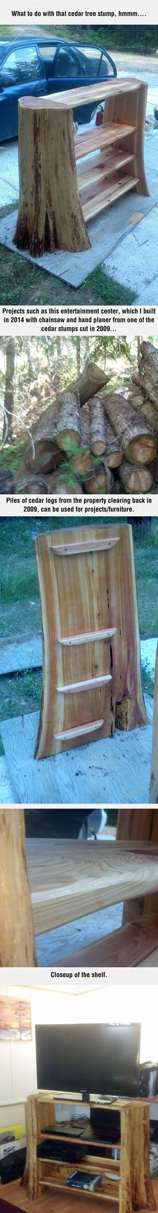 Tree Stump Shelf