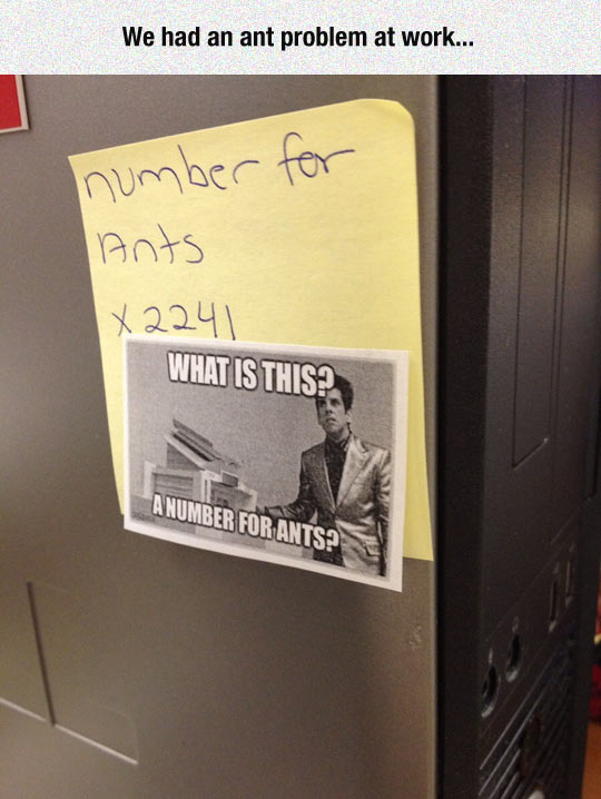 funny-work-sign-ants-number