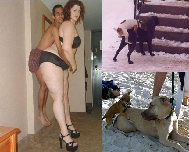 men-are-like-dogs-9