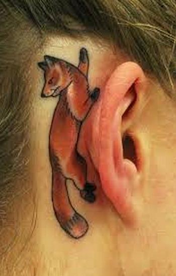 tat-ear-fox