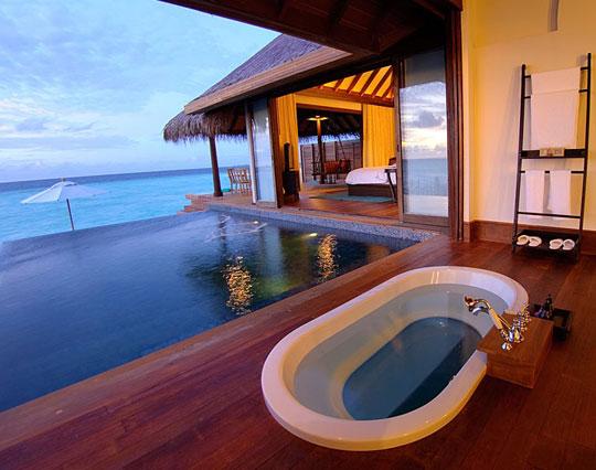cool-bathtub-pool-view-wood