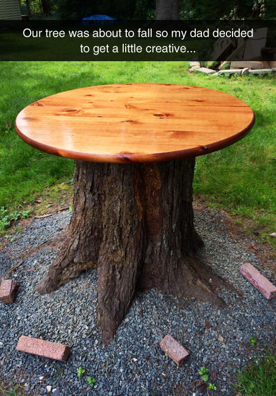 cool-tree-table-yard-creative