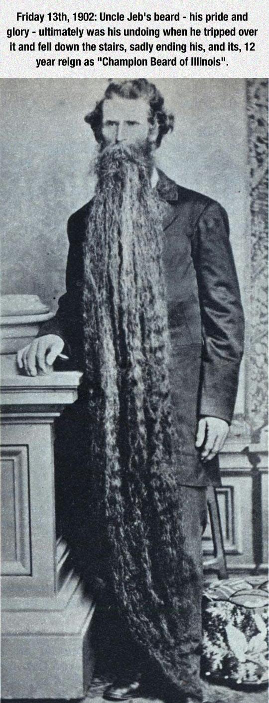 funny-Champion-Beard-long-man