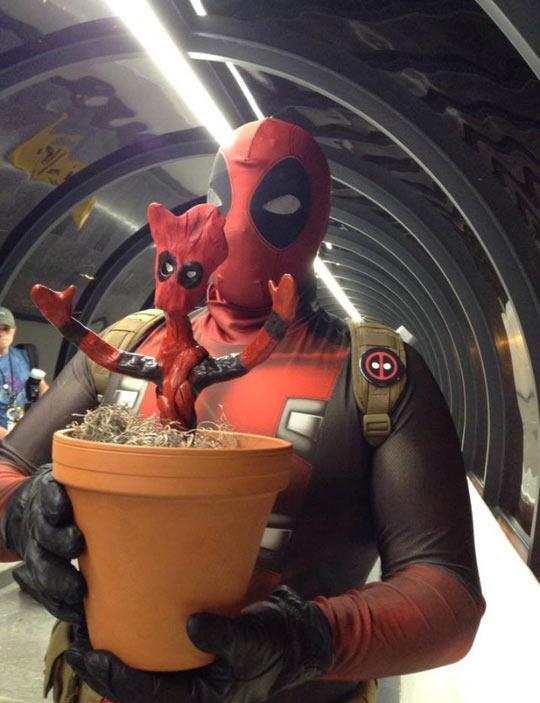 funny-Deadpool-Groot-cosplay-mixed