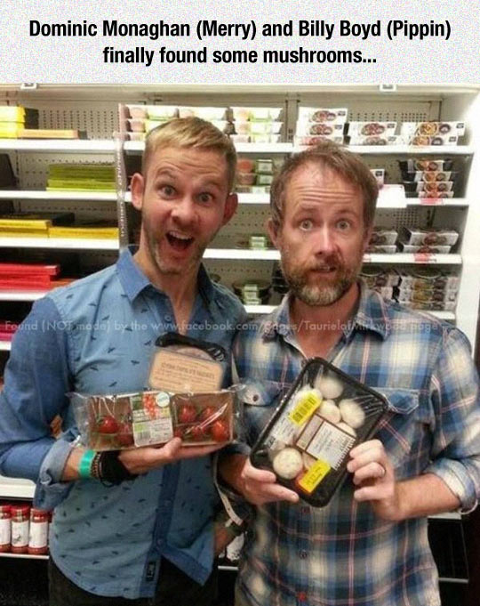 funny-Dominic-Monaghan-Billy-Boyd-mushrooms