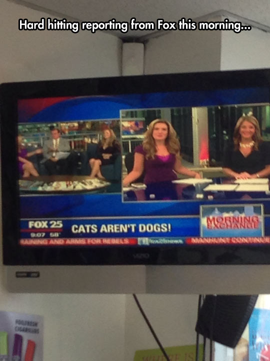 Fox Brings You All The Latest News