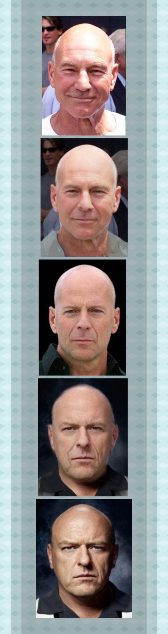 Evolution Of A Bald Man