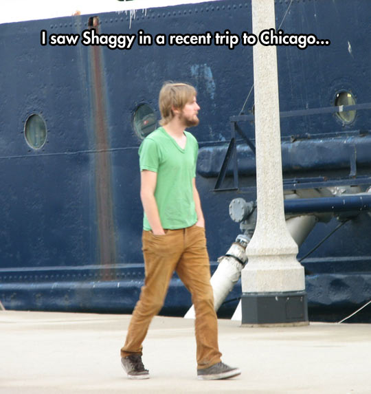 funny-Shaggy-walking-around-Chicago