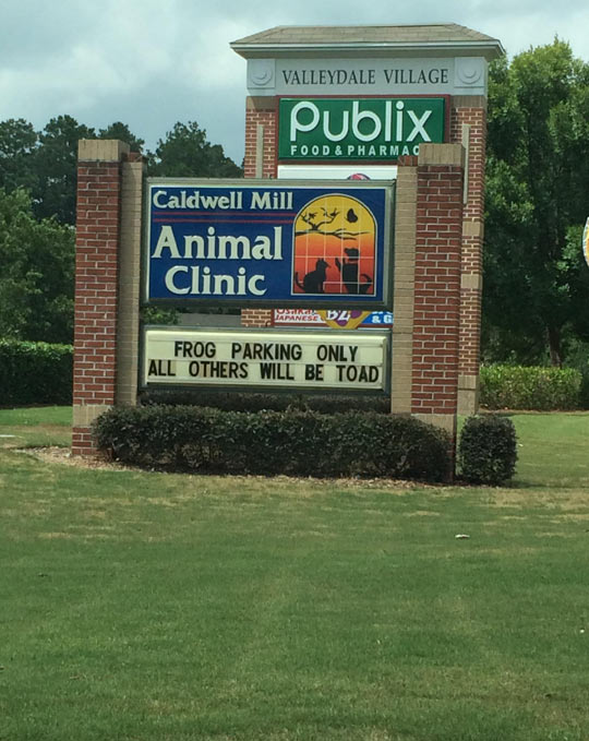 funny-animal-clinic-sign-frog
