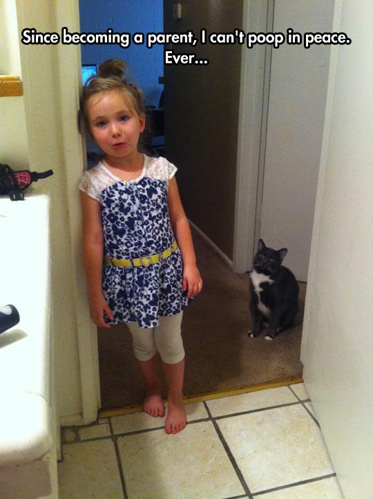 funny-bathroom-daughter-cat-annoying