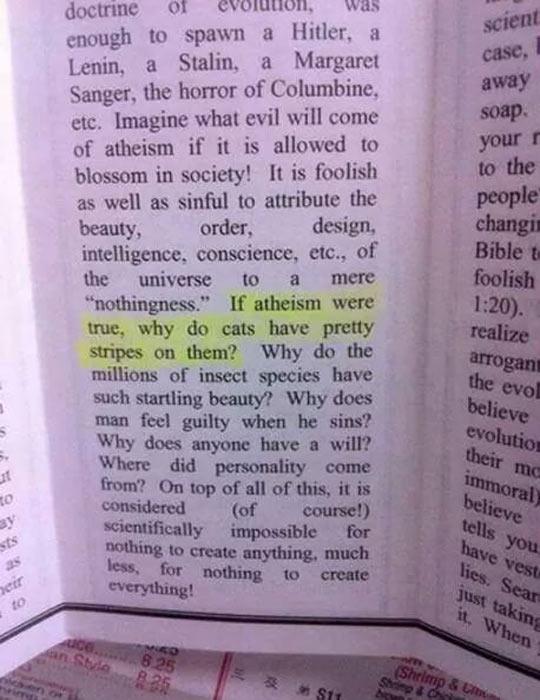 funny-book-atheism-cat-stripes