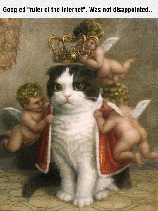 Ruler Of The Internet
