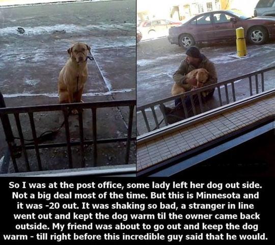 Keeping A Dog Warm