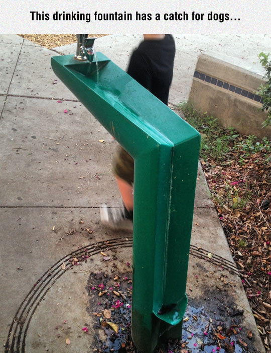 Cool Drinking Fountain