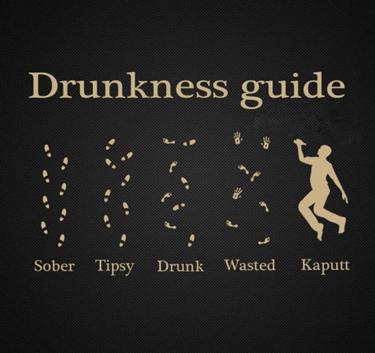 The Real Drunkenness Guide