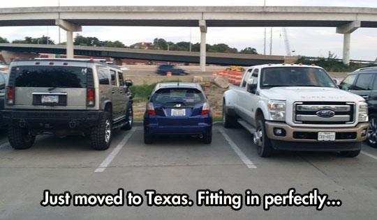 funny-little-car-trucks-Texas
