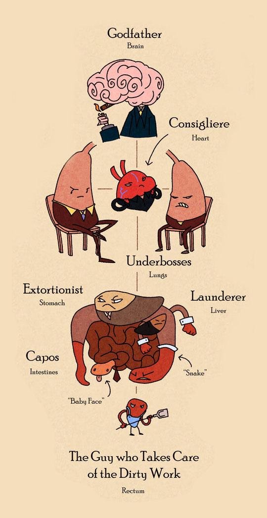 funny-organ-organized-crime-cartoon