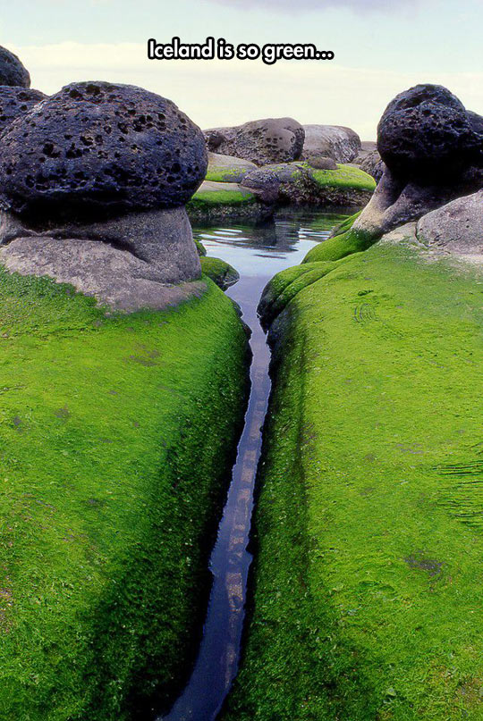 funny-river-stone-Iceland-green