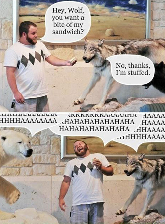 funny-stuffed-wolf-sandwich-joke