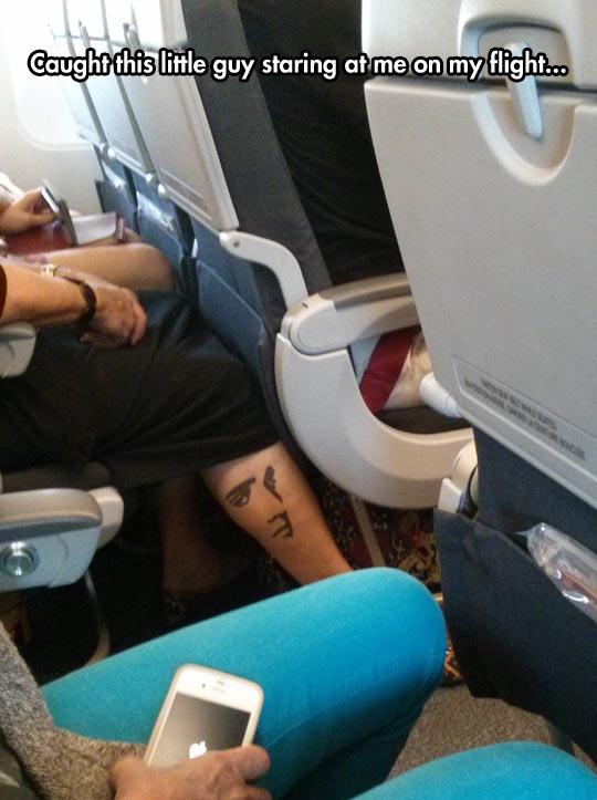 funny-tattoo-face-leg-staring-flight