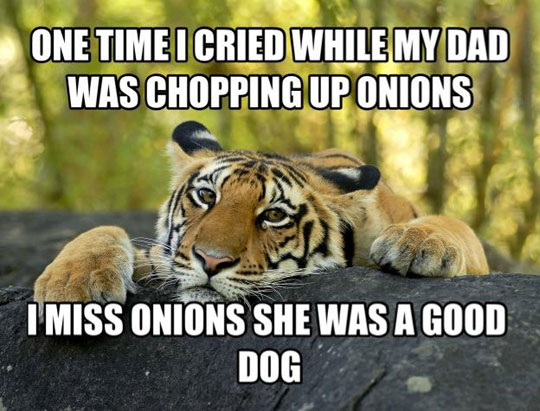 funny-tiger-onion-shopping