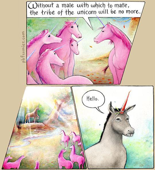 funny-unicorn-tribe-donkey-comic