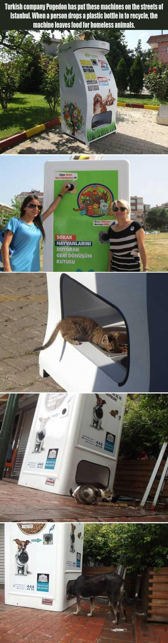 funny-vending-machine-homeless-animals