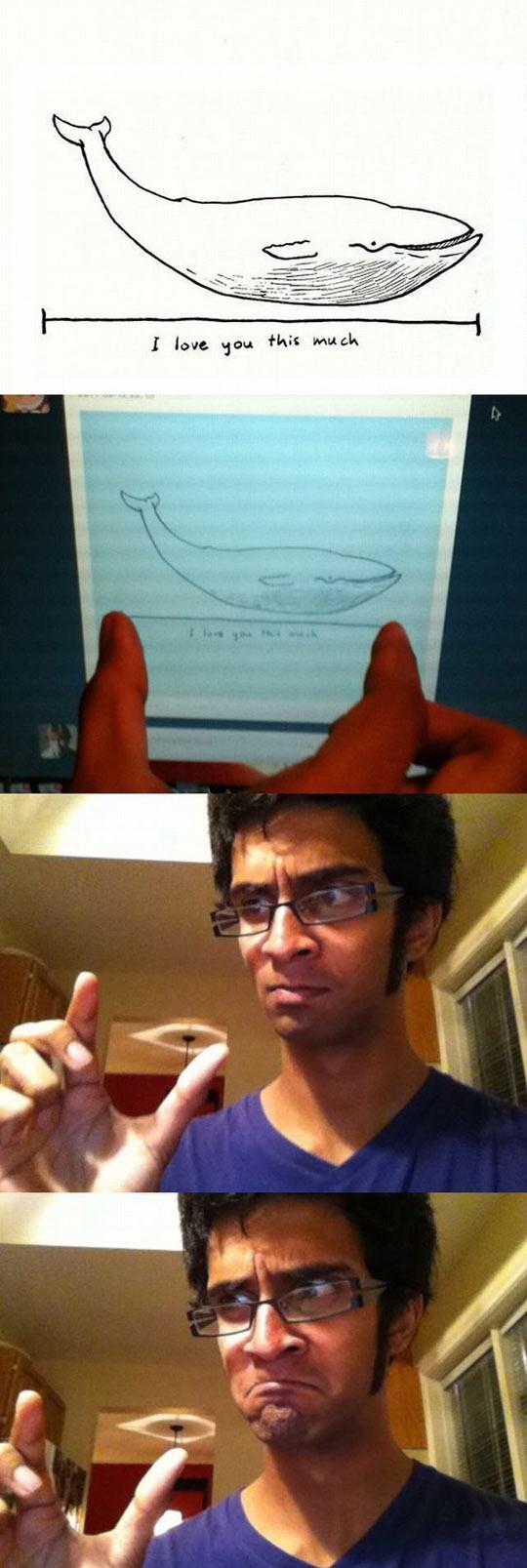 funny-whale-size-computer-image-sad