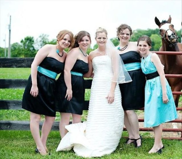 the_best_wedding_photobombs_ever_640_36