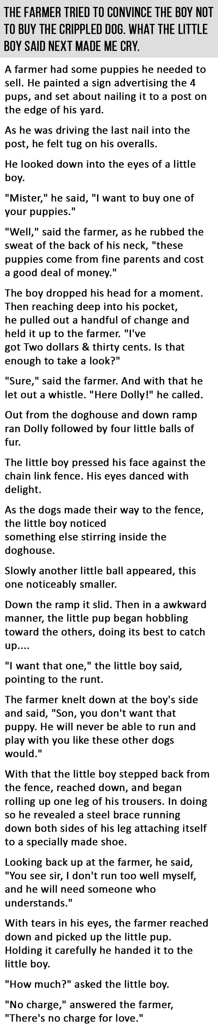 He Tried To Convince The Boy Not To Buy The Crippled Puppy. What The Boy Said Next Made Me Cry.