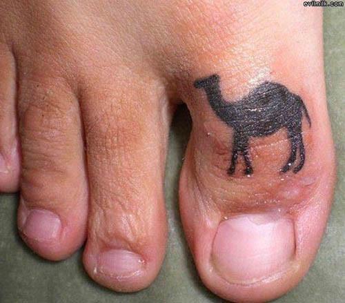 camel-toe