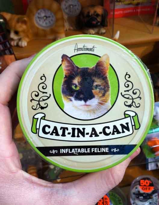cat-in-a-can