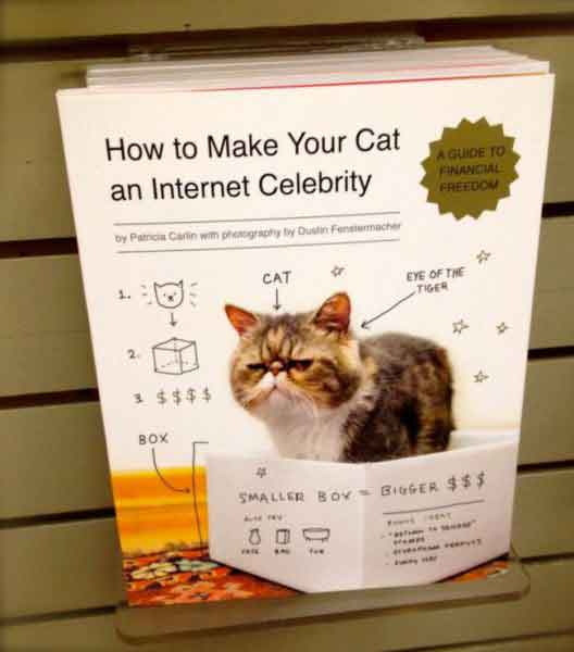 cat-products-that-actually-exist