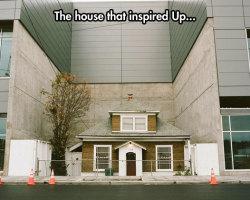 The Original Up House