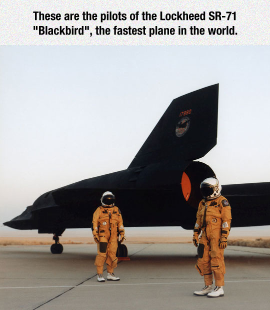 The Fastest Pilots In The World