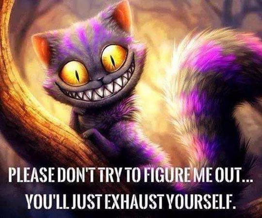 funny-Cheshire-cat-crazy-Wonderland