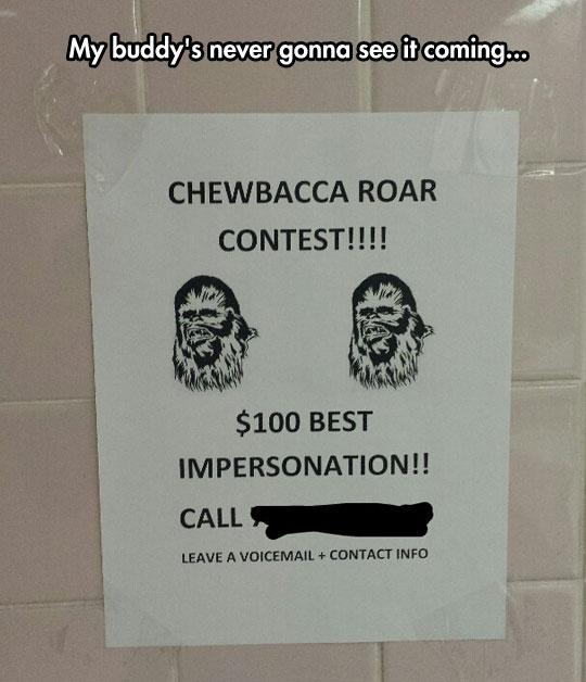 Roar Contest