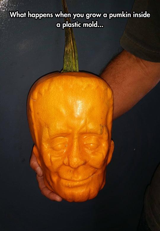 Frankenstein Pumpkin Head