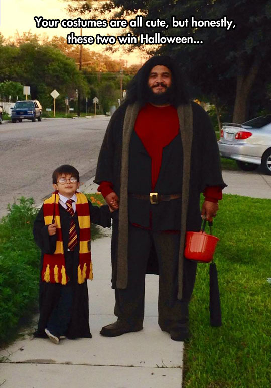 Harry Potter And Hagrid Costume